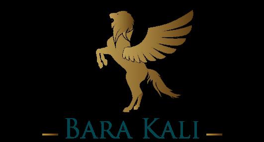 Barakali Africa